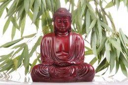 Karma je podle buddhistického učení přírodní zákon příčiny a následku.