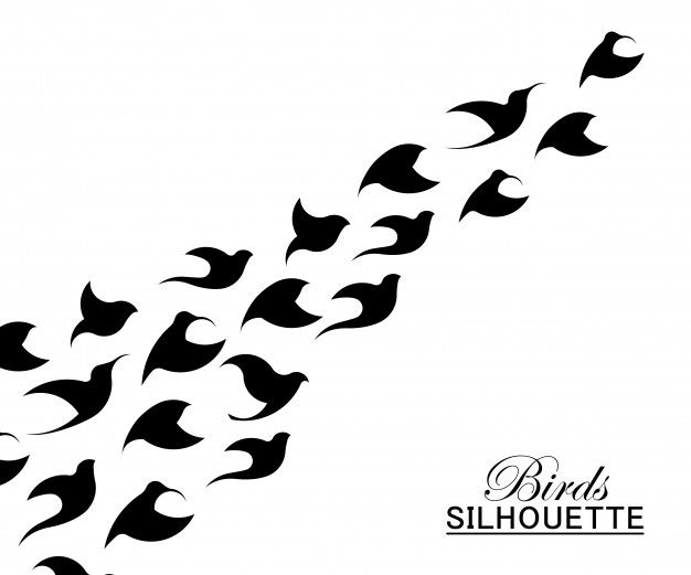 Abstract bird logo template.creative dove logotype business technology concept symbol Free Vector