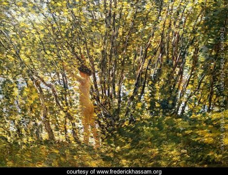 Frederick Childe Hassam Nude in Sunlit Wood
