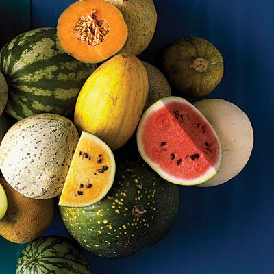 Garden-to-table: Even more unique varieties < How to Grow Melons - Sunset.com