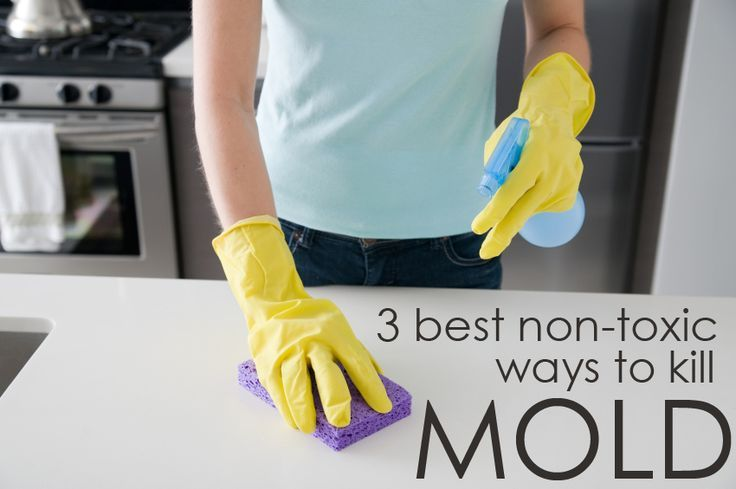 17 ideas about cleaning mold on pinterest mildew remover remove mold and cleaning vinegar. Black Bedroom Furniture Sets. Home Design Ideas