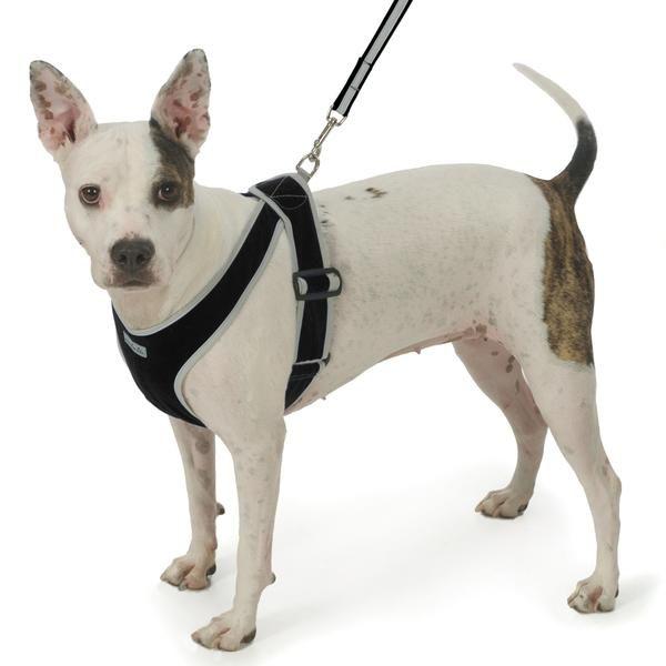 Pin On Dog Harnesses Vests Best Adjustable Designer Cute No