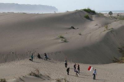 Sand dunes Parangkusumo