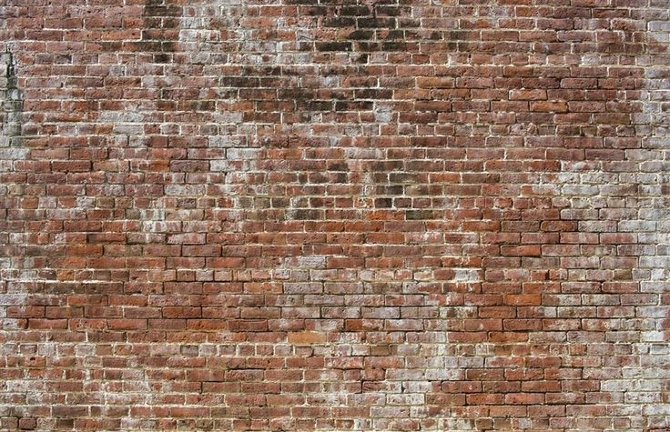 Historic Brick is an old aged brick texture with a highly realistic faux finish look. Use it to create the raw industrial look of brick in your bedroom or dining room. Historic Brick Old Aged Brick Raw Digital Home Wall Mural by Walls Republic M8994