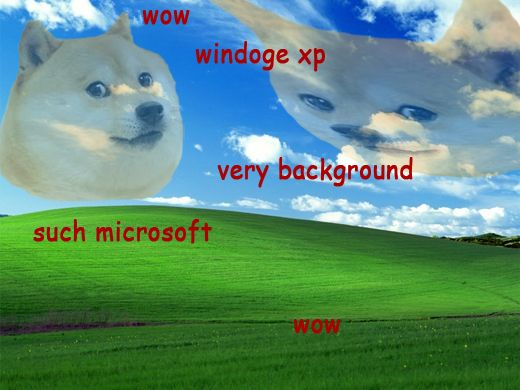 windoge xp