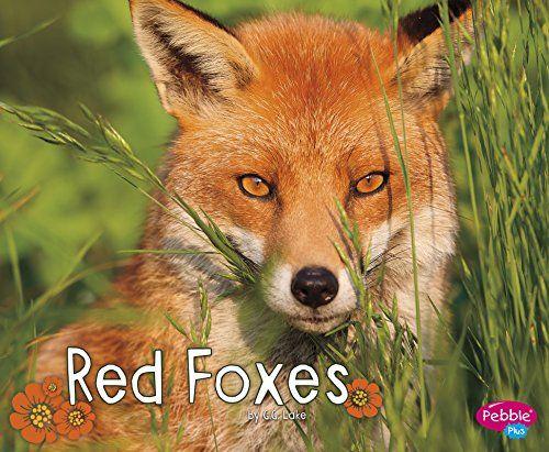 Red Foxes (Woodland Wildlife) by G.G. Lake https://www.amazon.com/dp/1515708225/ref=cm_sw_r_pi_dp_k2fNxbTY4JZ94