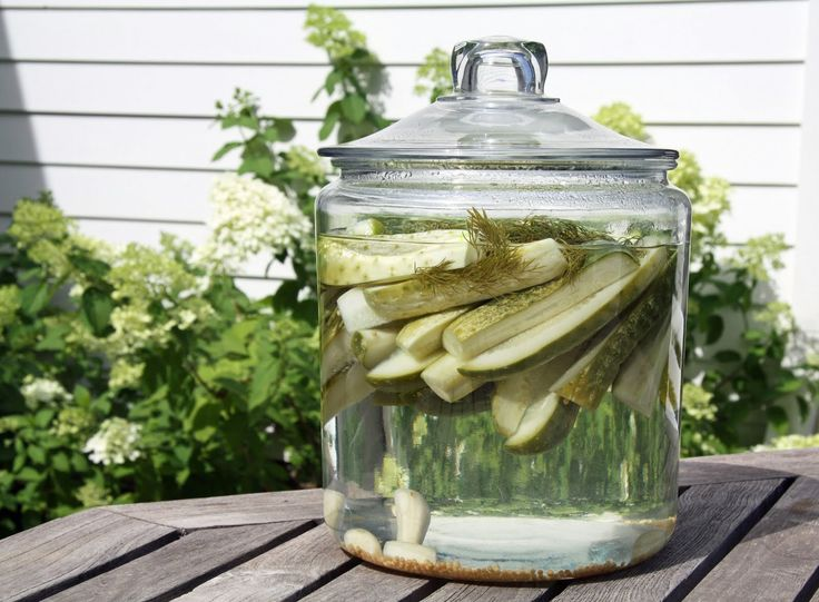 A Country Farmhouse: Refrigerator Pickles