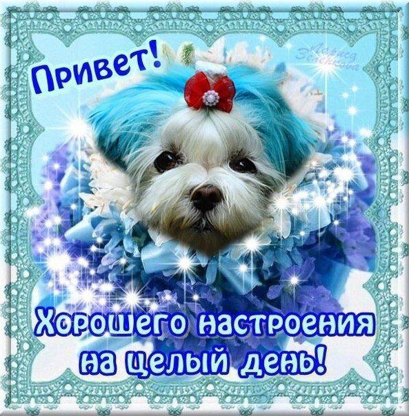 открытка удачного дня и привет от меня