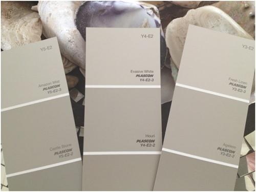 Plascon Greige Paint Colour Sample, Photo by Anne Roselt