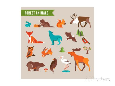 Forest Animals Vector Set of Icons and Illustrations Art Print