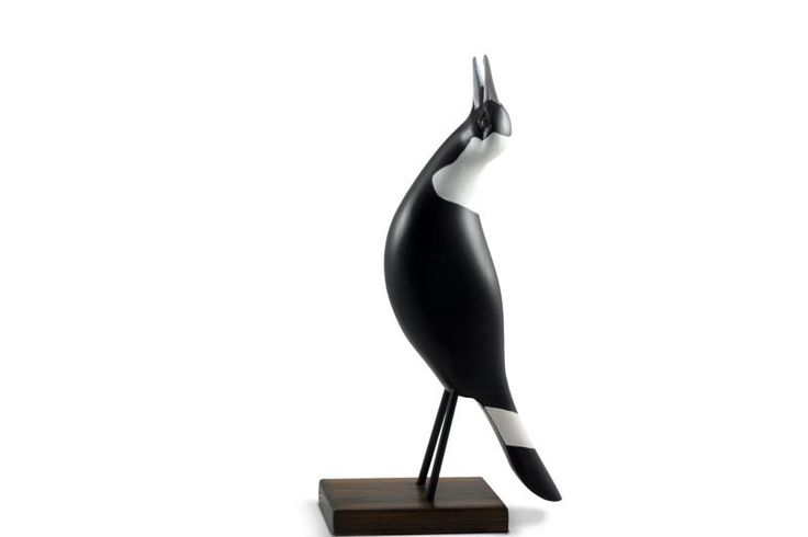 Australian Magpie Singing   Australian Woodwork