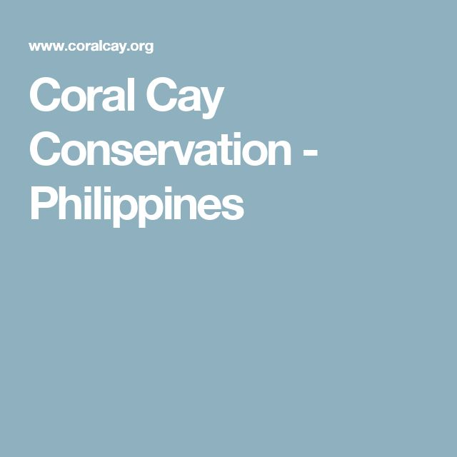 Coral Cay Conservation - Philippines