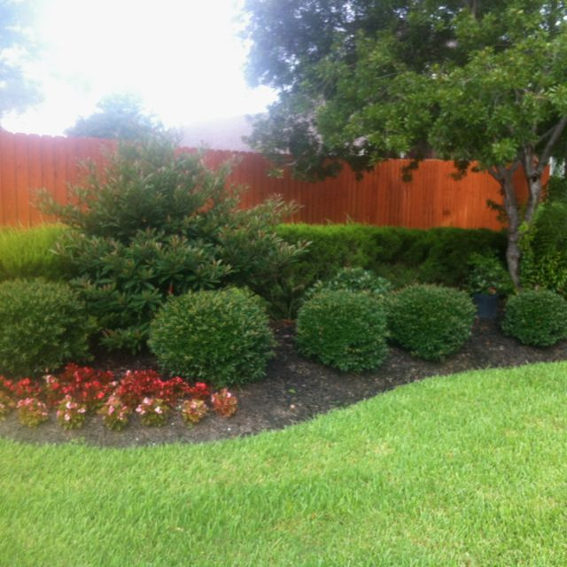 17 best images about jardin seco dry garden xeriscape for Easy maintenance landscaping