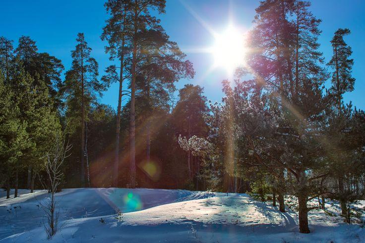 one sunny day by Anastasia Krylova on 500px
