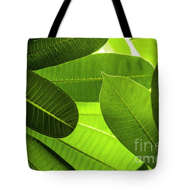 "Leaves Tote Bag 18"" x 18"""