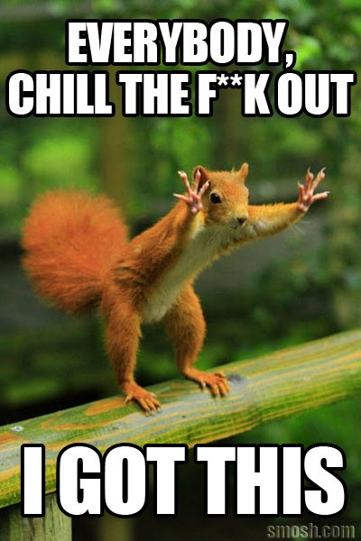 I got dis!: Animals, Squirrels, Quote, Funny Stuff, Humor, Funnies, Funny Animal