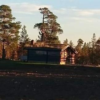 Femundsmarka - Hytte mellom to nasjonalparker.   Inatur.no