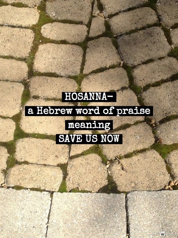 HOSANNA- from the Hebrew word of praise-hoshiena--- meaning-  save us now