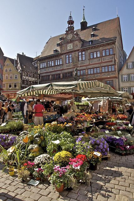 Tübingen marketplace, Germany. Small steps, narrow alleys and pointed gables shape the silhouette of old Tübingen on the way up to its castle. The Swabian university town of 89,000 inhabitants and 25,000 students combines the flair of a lovingly restored medieval centre of town with the colorful bustle and typical atmosphere of a young and cosmopolitan students' town.