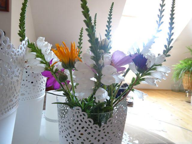 Home life...cu Mia: Buna ziua prieteni, Florile pe care le-am avut pen...