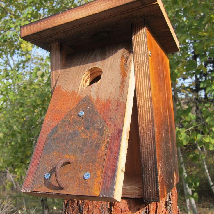 11 best images about species specific birdhouses on for Different types of birdhouses