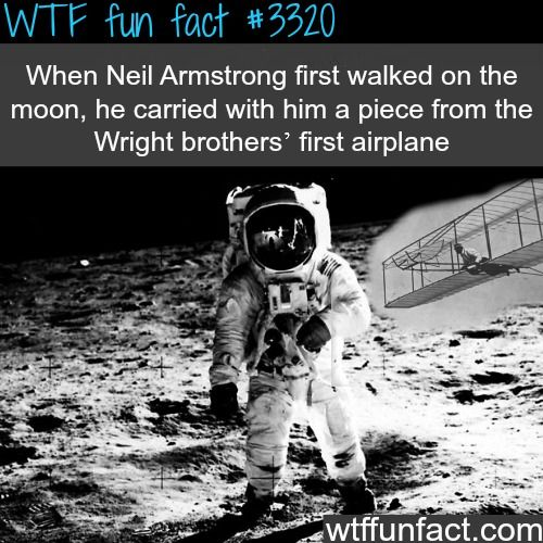17 Best images about WTF: Fun Facts on Pinterest | Funny ...