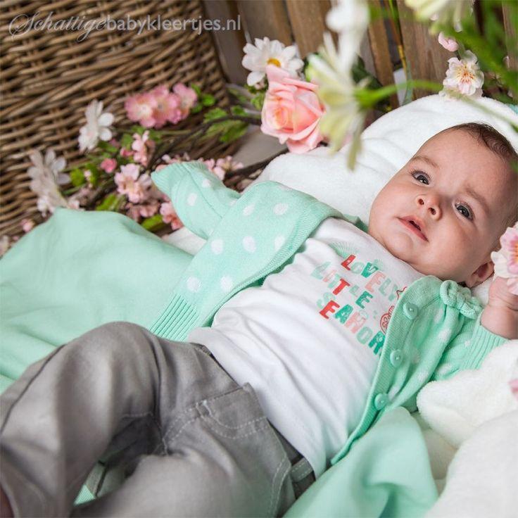 Dirkje babykleding T-shirt Little Seahorse - Dirkje babykleding