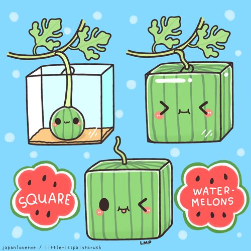 Square watermelon art I made for Japan Lover Me's Summer Month last August! :3