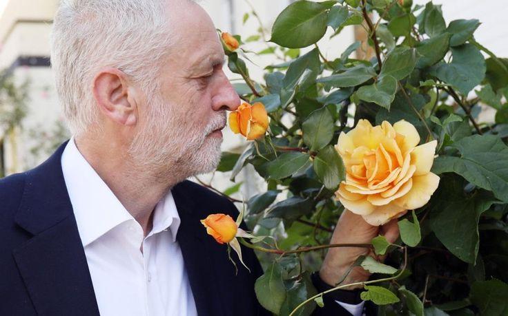 "Jeremy Corbyn urged to stick with his shadow cabinet team as big names hover on backbenches Sitemize ""Jeremy Corbyn urged to stick with his shadow cabinet team as big names hover on backbenches"" konusu eklenmiştir. Detaylar için ziyaret ediniz. http://xjs.us/jeremy-corbyn-urged-to-stick-with-his-shadow-cabinet-team-as-big-names-hover-on-backbenches.html"