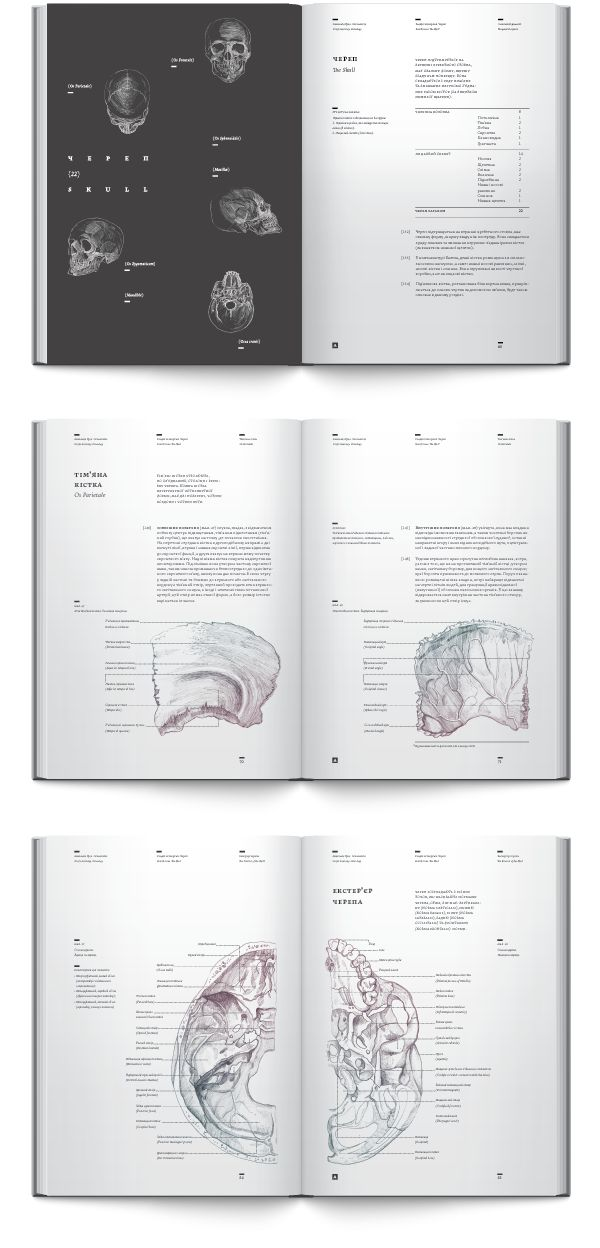 Anatomy book. Osteology by Irene Shkarovska, via Behance