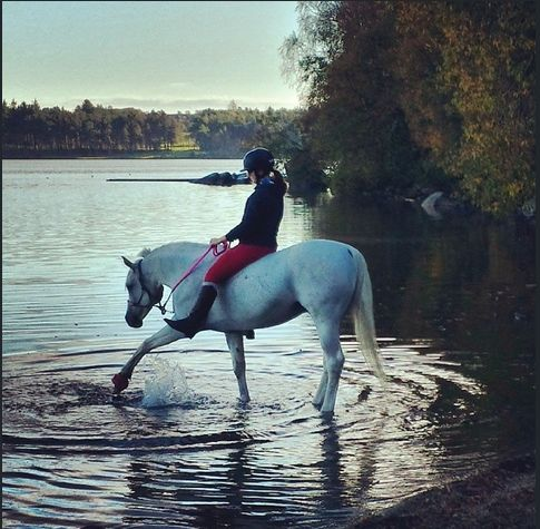 A fun thing to do in the autumn is to go riding. Great photo by @pk1015 (Per Kristian Djuvsland) #regionstavanger #visitnorway #norway #fjordnorway