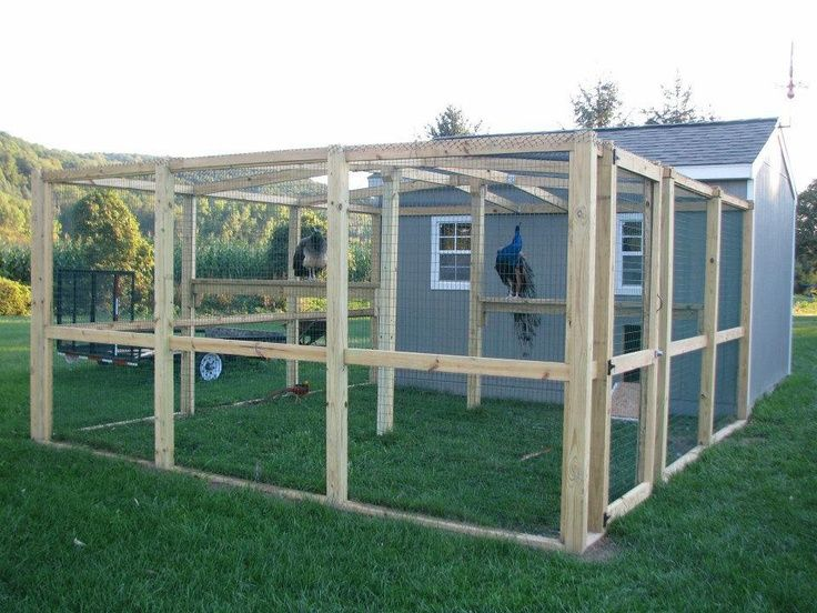 Great shed to chicken coop