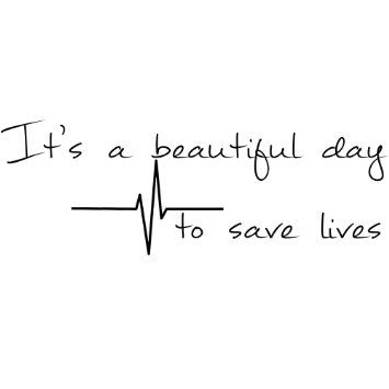 Amazon.com: DECAL SERPENT It's A Beautiful Day To Save Lives Derek ...