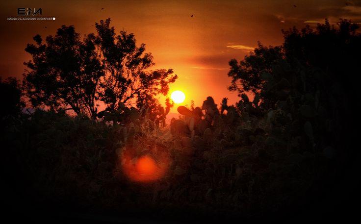 Summer Sunset by Enea H. Medas  on 500px