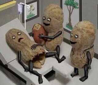"""When peanuts have babies....""""oh look, it's a girl."""""""