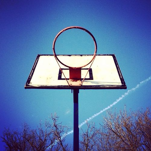 Thinking about flight: the basketball hoop waits beneath the high trees and higher vapour trail for a ball to fly through its ring. Everything is in the air.  #fly  #composition  play  #flight -  goal,  #vapourtrail,  art