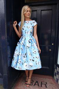Pale Baby Blue Midi Skater Dress | Buy Dresses Online Ireland | Dress for Wedding Guest
