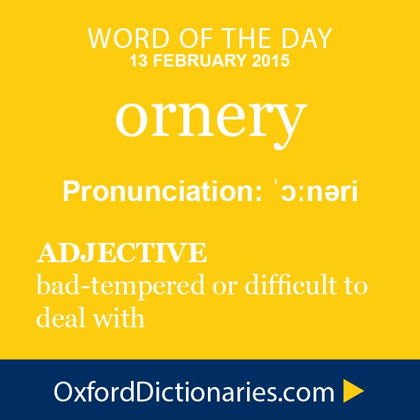 ornery (adjective): bad-tempered or difficult to deal with. Word of the Day for 13 February 2015. #WOTD #WordoftheDay #ornery