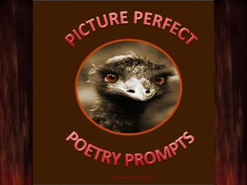 $3 Grades 5-10  Looking for an effective tool for students to use during writing activities?  This 17-page package includes 10 photographs (8 photographs, 1 painting, one drawing) with writing prompts. Seven forms of poetry are introduced: free verse, cinquain, pastoral, diamante, haiku, tanke and nursery rhymes. Re-pin for later!!!