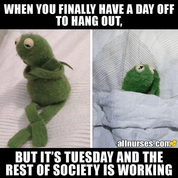 The Struggles Of A Nurse Work Schedule Work Humor Nurse Jokes Work Memes