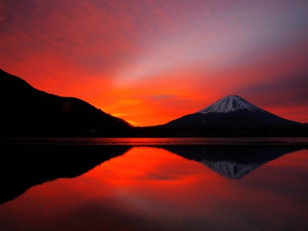 [Mt. Fuji from Lake Shojiko] - 山梨・精進湖・富士山 - Yamanashi, Japan