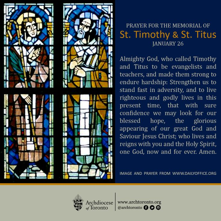 titus catholic singles Daily catholic homilies to uplift the spiritual life and faith of your parishioners.