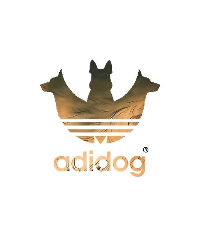 070d5cf68 adidog dog lovers | the adidog t-shirt | Dog lovers, Dogs e Lovers