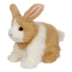Hop `N Cuddle Tan Bunny It really is the perfect gift for the child in your life who is begging for a rabbit for Easter. It at least will not end up in an animal shelter or worse, left alone in a small cage. http://bit.ly/1AeSvbF