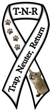 TRAP NEUTER RETURN RIBBON. If you can, please trap, neuter and release feral cats so no more unwanted feral kittens are born.
