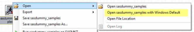 Regular Expressions, SAS Enterprise Guide, SAS program editor, SAS programming