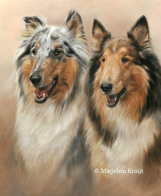 Collies pet portrait painting in oil by Marjolein Kruijt #dogart #collies #ilovecollies #paintings #art  #animalartist #petportrait #animalportraiture www.marjoleinkruijt.com