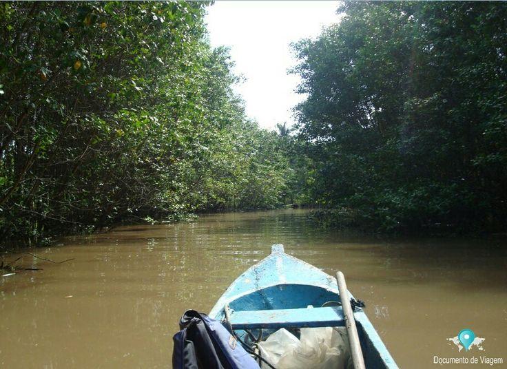 Passeio de canoa pelo rio de Contas em Itacaré na Bahia.   Contas river in Itacaré, Bahia.