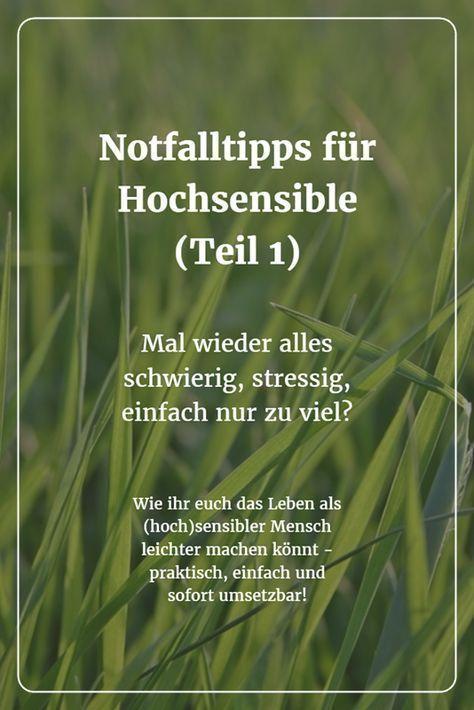 Nicht nur für HSP - sondern für mehr Achtsamkeit und Akzeptanz im EIGENEN LEBEN !!! Diese praktischen und wirkungsvollen SOS-Tipps können Hochsensiblen helfen, ihr Leben wieder besser in den Griff zu bekommen.