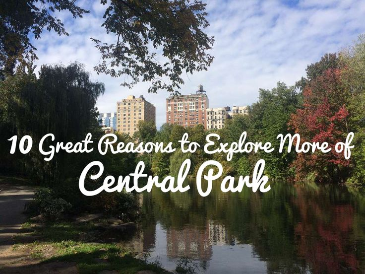 If you're like me, you have probably only enjoyed a small percentage of what Central Park has to offer. These are my 10 tips to seeing  more of the hidden gems hidden on this 843 acre green expanse...